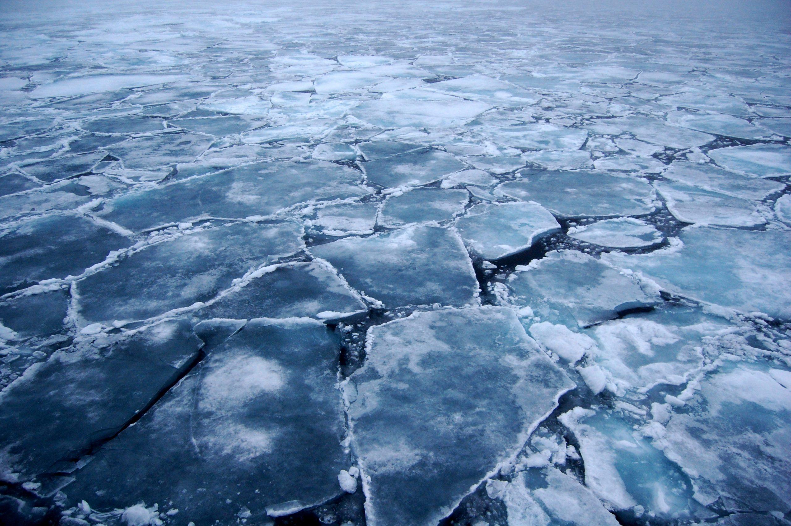 antarctic-odyssey-10-scaled
