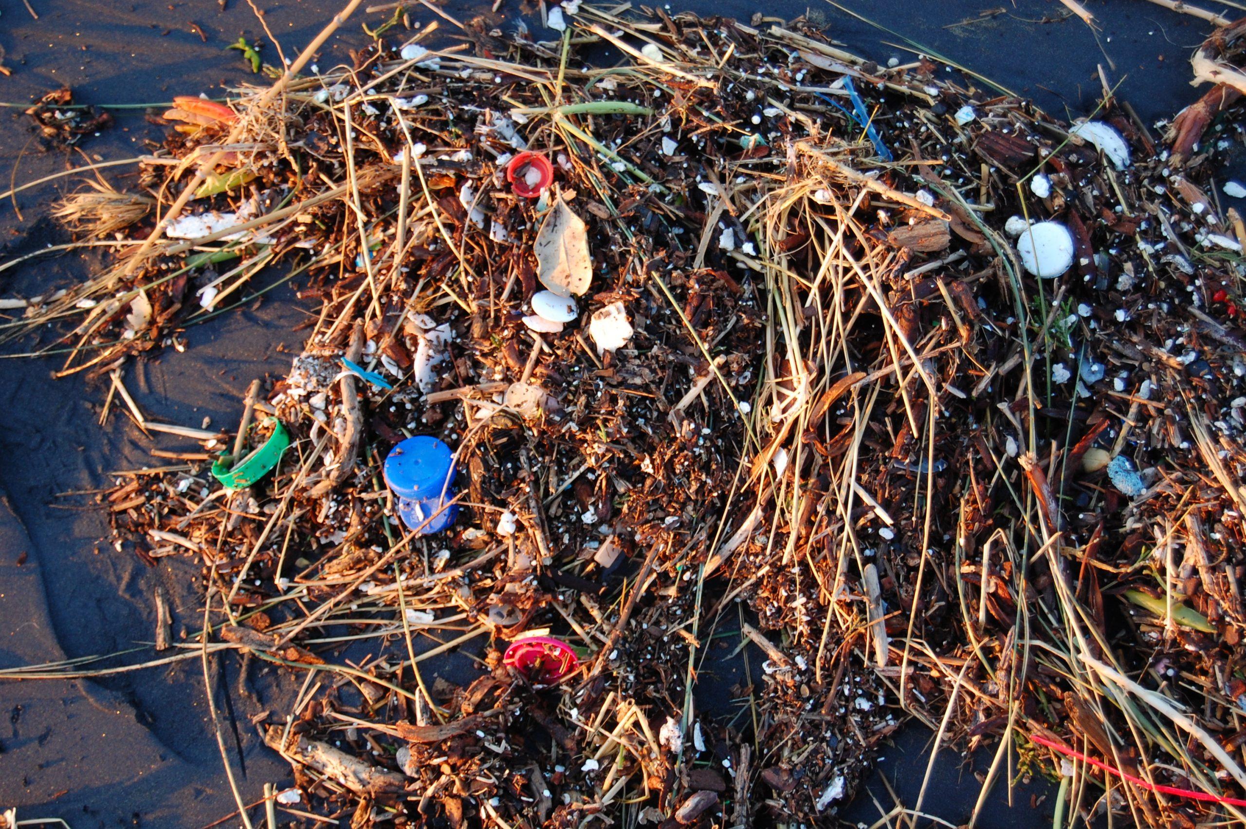 Plastic_Ocean_(4408273247)